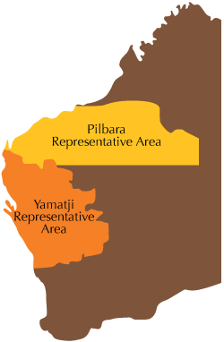 representative-areas